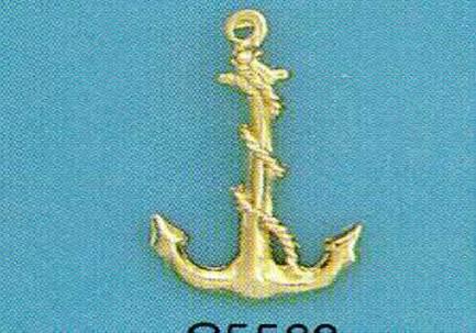 C5569